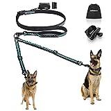 PHILORN Freihand Hundeleine für 2 Hunde - Ablösbar & Reflektierend