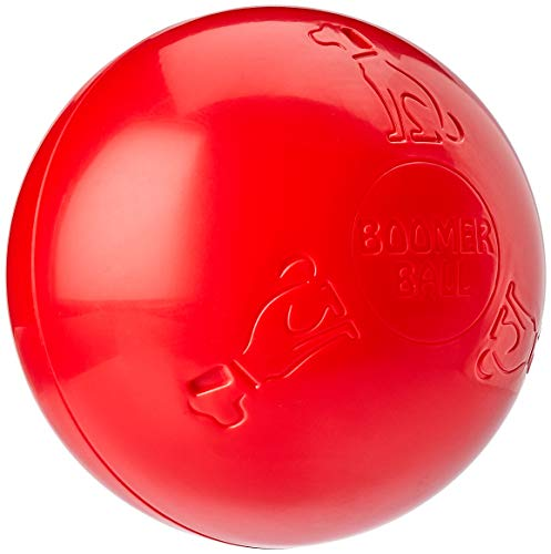Company of Animals Boomer Ball, 25,4 cm (farblich sortiert)