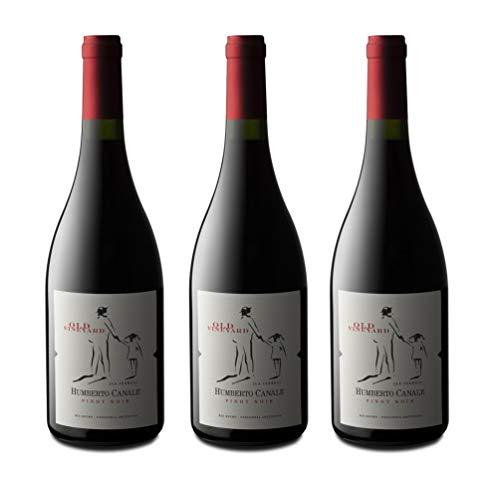Humberto Canale - 2016 - Old Vineyard/Pinot Noir - Patagonien/Argentinien - Rotwein Trocken (3 x 0.75 l)