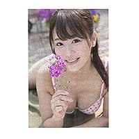 300ピースパズルakb48平嶋夏海(ひらじま なつみ、Natsumi Hirajima) Diyアートワーク(26x38.3cm)