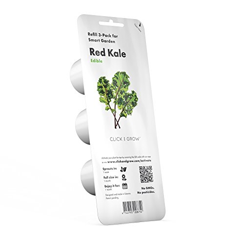 Click & Grow Smart Garden refill capsule | Rosso kale 3-pack