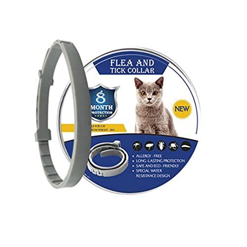 8 månaders loppa-fästinghalsband för hundar katter halsband husdjur justerbart hundhalsband för små hundar