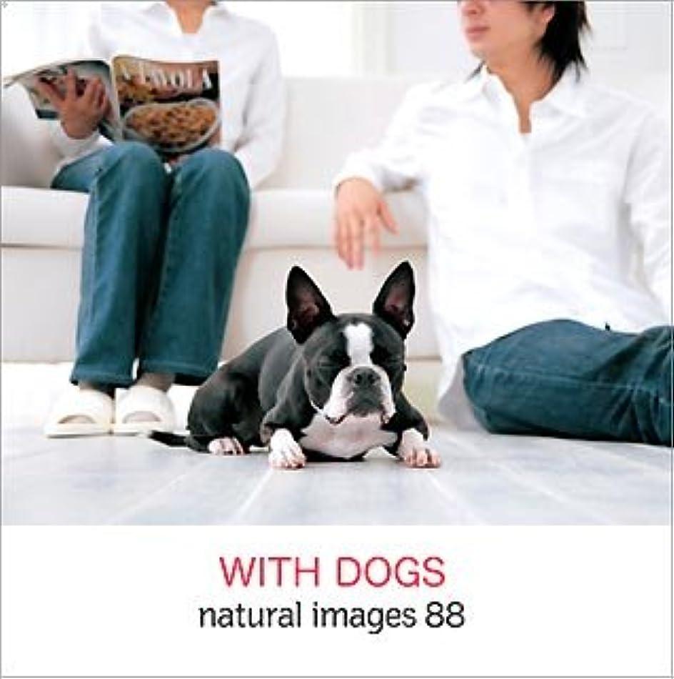 ピラミッドヒューム運動natural images Vol.88 WITH DOGS