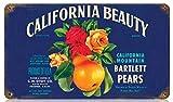 DGBELL California Fruit Signe d'étain Vintage rétro Plaque de Fer Peinture Avertissement Avis rétro Affiche café Bar Film