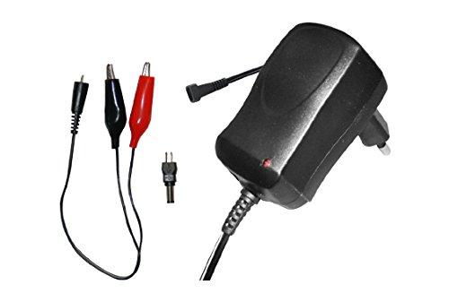caricabatterie per batterie al piombo 12V 1000 mAh corrente costante