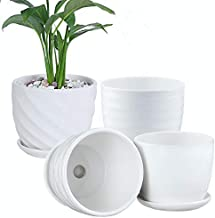 Plant Pots - 4.7 Inch Cylinder Ceramic Planters with Connected Saucer, Pots for Succuelnt and Little Snake Plants, Set of ...
