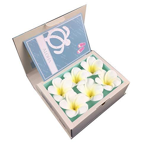 バスフレグランス プルメリア ブックボックス バスフラワー ハワイ 花の形の入浴剤 インスタ映え ギフト プレゼント プレゼント ホワイトデー 贈り物 花 入浴剤