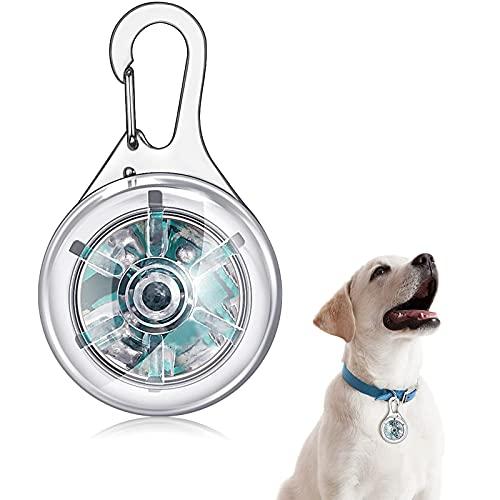 Chyang Collar de Mascotas LED Light Clip-on Pet Light Dogs and Cats Safety LED LED Luz Afile Impermeable Colgante para Noche Caminando Corriendo Equitación (Color : Rainbow Color )