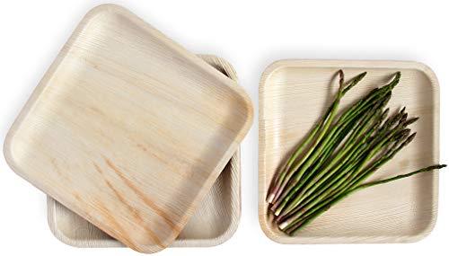 """Leafily Palmblattteller - 25 cm (10\"""") Quadratisch - Bio - 100{9810b751fd8db766740acf0f901f2143d61eb3e1f379350d9dfdf5aa0d9384d6} kompostierbar - Biologisch abbaubar - Robust- umweltfreundlich - Premium-Qualität - Einwegteller - USDA Zertifiziert - 22 Stück"""