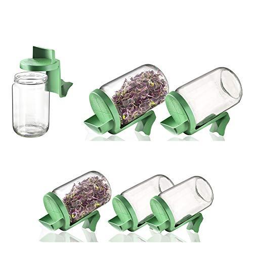 Germline - Germoir en verre - Lot de 6 germoirs en verre Germline