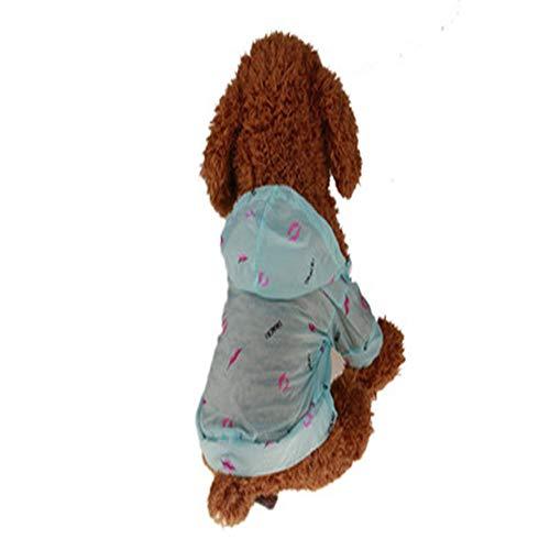 Hey shop Ropa de mascota de primavera y verano de la mascota de la ropa de perro osito perro calzados de mascotas suministros