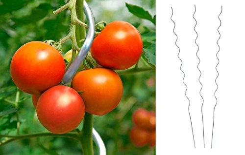 Unbekannt 20 Stück Tomatenspiralstab 180cm Tomaten Spiralstab Pflanzstab Pflanzspiralstab