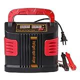 Hadeyicar 350W 14A Auto Plus LCD Set Cargador de batería de 12V-24V portátil Arrancador de automóviles