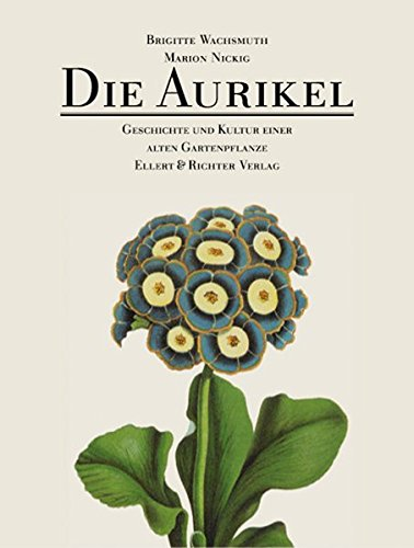 Die Aurikel. Geschichte und Kultur einer alten Gartenpflanze