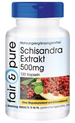 Schisandra Extrakt 500mg (WuWeiZi - Schisandra chinensis) mit 9% Schisandrin - vegan - ohne Magnesiumstearat - 120 Schisandra-Kapseln