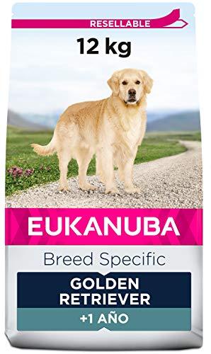 EUKANUBA Breed Specific Alimento seco para perros golden retriever adultos, alimento para perros óptimamente adaptado a la raza 12 kg