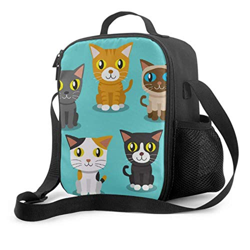 Lawenp Fiambrera para hombres, dibujos animados, lindo gato, mujer, lonchera con asa, correa para el hombro, bolsa refrigeradora reutilizable para hombres, mujeres, trabajo, escuela, picnic