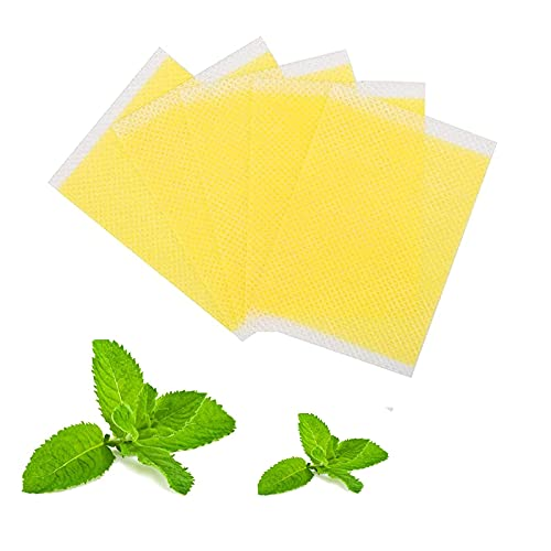 Fujimint Patch, Herbal Waist Trim Japanese Mint Patch (30pcs)