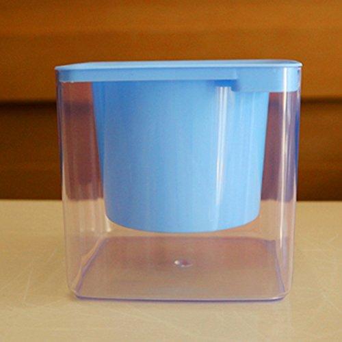 Carré Lazy d'arrosage automatique Fleur jacinthe Vert Plant-free solubles Plastique Transparent Pots de fleur de coton, bleu, Small