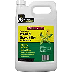 Compare-N-Save Concentrated weed killer with Glyphosate