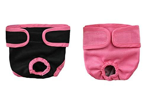 Oyccen 2 Piezas Pañales Reutilizables Pantalones Fisiológicos para Perros Pequeños Medianos y Grandes Ropa Interior Hembra Mascota Bragas Sanitarias Higiene Pañal