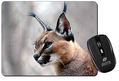 Advanta - Mousemats Lynx Caracal Computer-Maus -Matte/pad