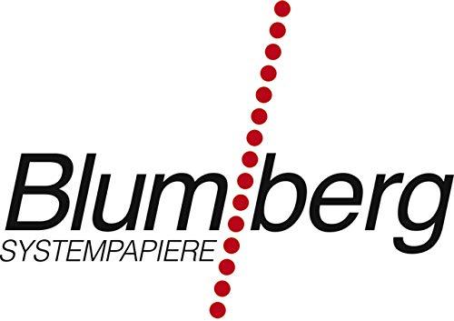Blumberg Thermorolle, 80 mm x 80 m, Kern-Ø: 12 mm, weiß (1 Stück)