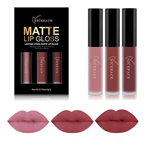 Bluestercool 3Pcs Nouveau Mode Matte Imperméable Rouge à lèvres Liquide Cosmétiques Kit Lip Gloss (E)