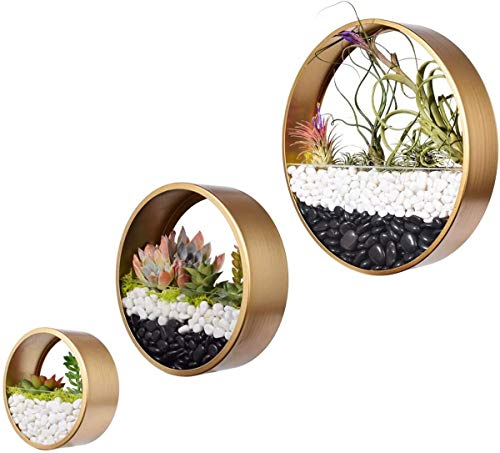 Best <strong>Planter Gold Round</strong>