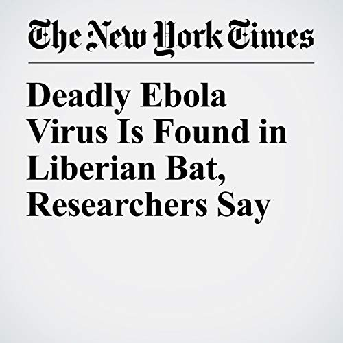 Deadly Ebola Virus Is Found in Liberian Bat, Researchers Say audiobook cover art