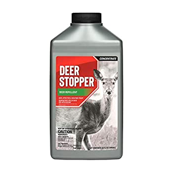 Best deer stopper Reviews