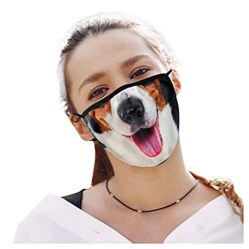 PPangUDing Mundschutz mit Motiv Waschbar Bunt Staubdicht Atmungsakti Mund und Nasenschutz Sommer Bandana Halstuch Multifunktionstuch für Damen Herren