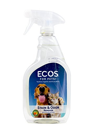 Earth Friendly Products Pet Stain/Odor Remover 22oz