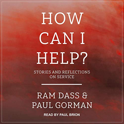 How Can I Help? audiobook cover art