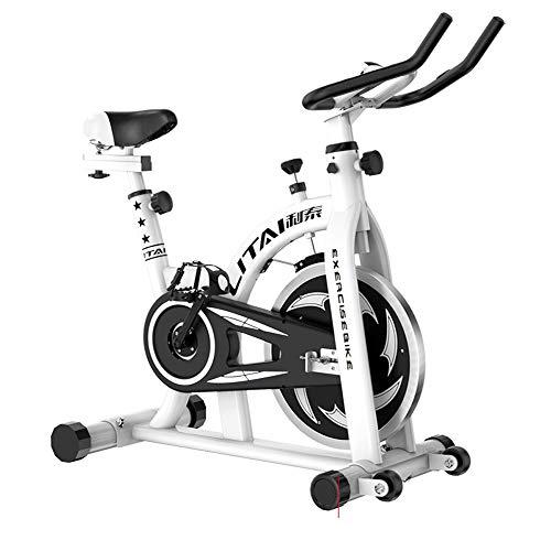 HOIHO Indoor Cycling Cyclette Spin Bike Training Bike Machines Regolabili Manubri E Sedili LCD Letture velocità, Distanza, Tempo, Calorie (20KG Volano) (Color : White)