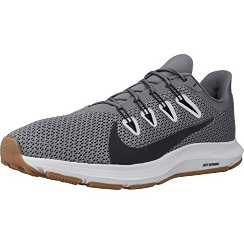 Nike Quest 2, Running Shoe Mens, Gris Humo/Gris Humo Oscuro/Polvo Fotón