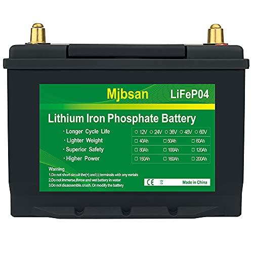 Batería de litio para coche, 12 V, 40 Ah, LiFePO4, ideal para aplicaciones RMS/campistas, marinas y fuera de la red, NEU_40Ah_mit_10A_Laderer más de 7000 baterías de ciclo profundo