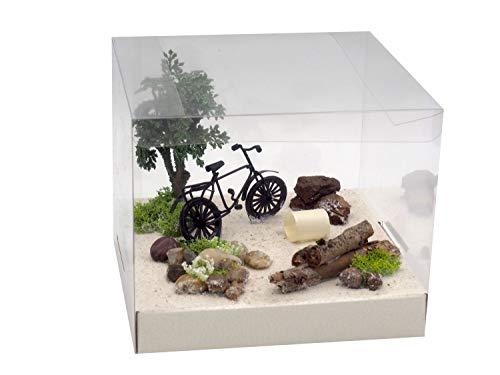 ZauberDeko Geldgeschenk Verpackung Geldverpackung Fahrrad Urlaub Weihnachten Geburtstag Mann