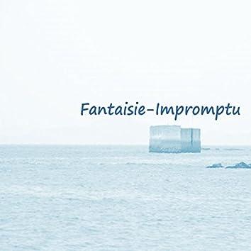 Fantaisie -Impromptu (Frédéric François Chopin - Taker Mix)