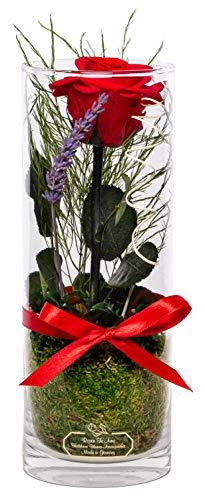 Rosen-Te-Amo 1 haltbare rote Rose mit Stiel in der Vase mit echten Bindegrün; Konservierte Rose im Glas: langlebige Weihnachten Deko 3 Jahre haltbar ohne Wasser