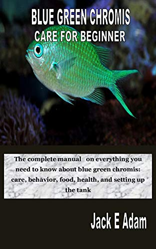 BLUE GREEN CHROMIS CARE FOR BEGINNER:...