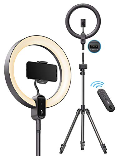 TaoTronics 12'' Ring Light with Stand, Selfie Ring Light Outer 24W with USB Mobile Phone Charging Port, 3 Lighting Modes,10 Brightness Levels, Touch and Remote Control for Live Streaming, YouTube