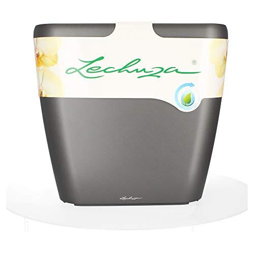 Lechuza QUADRO LS Premium 50 Komplettset - ANTHRAZIT metallic