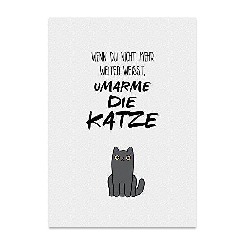 Kunstdruck, Poster mit Spruch – UMARME DIE Katze – Typografie-Bild auf hochwertigem Karton - Plakat, Druck, Print, Wandbild