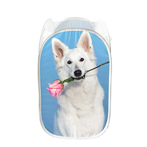 GIRLOS Clean Laundry Basket Dog Lying in Bed Full of Red Flower Womens Laundry Hamper Collapsible for Storage and Easy to Open Pop-up Mesh Laundry Baskets for Teens Great for Room Dorm and Tra