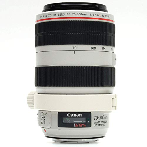 Canon EF 70-300mm f4-5.6 L IS USM Lenses