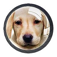 引き出しハンドルは丸いクリスタルガラスを引っ張る キャビネットノブキッチンキャビネットハンドル,ゴールデンレトリバーの子犬
