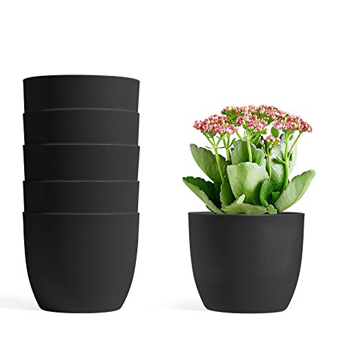 T4U 12CM Self Watering Planters Plastic Black Set of 6, Modern Round Flower Pot Indoor Nursery Bonsai Plant Pot for Garden House Plants, Aloe, Herbs and More