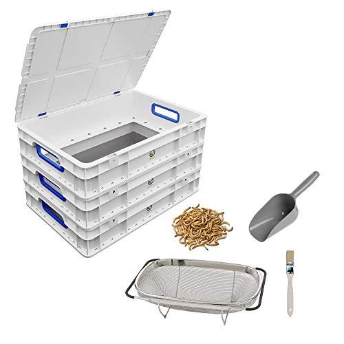 Komplett-Set zum Züchten von Mehlwürmern