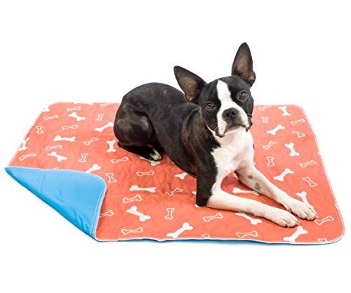 The Proper Pet Washable & Reusable Pee Pads for Dogs - Puppy Training (2-Pack) Sm/Med/Lg (Medium 28